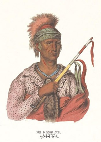 Ne-O-Mon-Ne, an Ioway Chief by Mckenny & Hall art print
