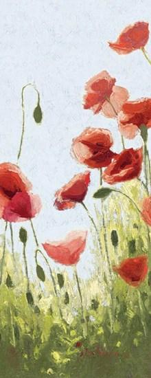 Mountain Poppies II by Shirley Novak art print