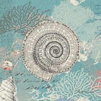 Shells on Aqua by Wendy MacFarlane art print