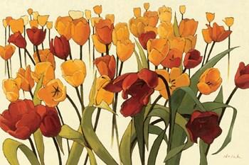 Tulipomania by Shirley Novak art print