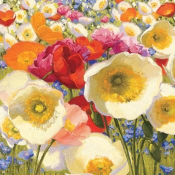 Sunny Abundance Crop by Shirley Novak art print