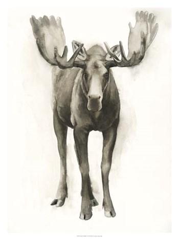 Majestic Wildlife I by Grace Popp art print