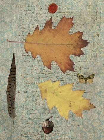 Autumn Leaf III by Sandy Lloyd art print