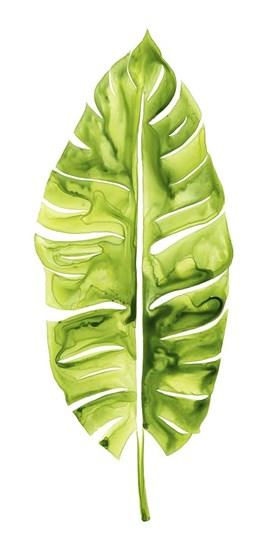 Banana Leaf Study I by Grace Popp art print